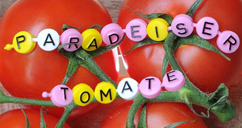 paradeiser-tomate